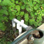 保田小学校 井戸から出る水